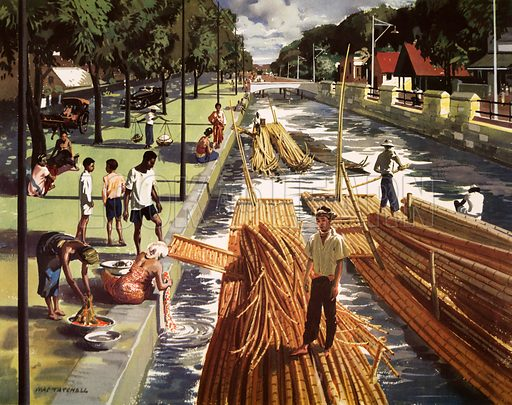 Macmillan's History Picture. Cane and bamboo in Java. Original poster for sale for £50 including VAT and postage within the UK.