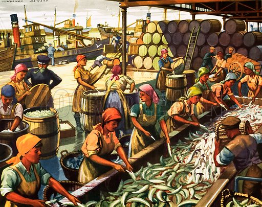 Herring II-Preparing the fish for export. Original poster for sale for £50 including VAT and postage within the UK.