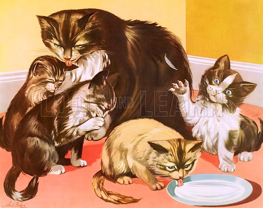 A cat and her kittens. Macmillan poster. Original poster for sale for £50 including VAT and postage within the UK.