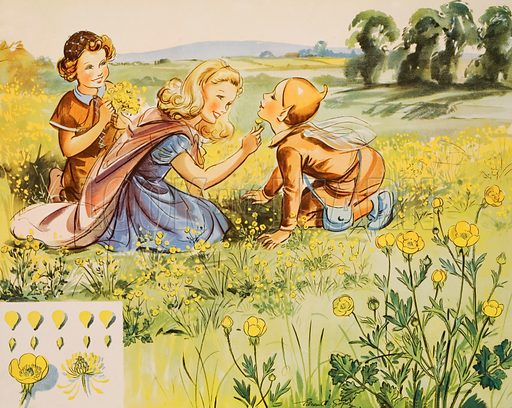 Tick-tock and buttercups. Macmillan poster. Original poster for sale for £50 including VAT and postage within the UK.