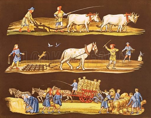 Farming in the fourteenth century. Macmillan poster. Original poster for sale for £50 including VAT and postage within the UK.