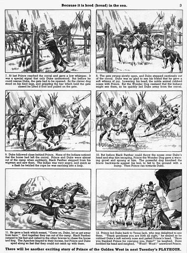 Prince the Wonder Dog. Comic strip from Playhour, 3 September 1955.