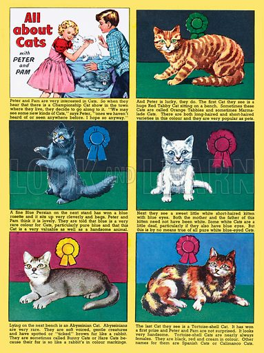All About Cats. Feature strip from Playhour, 26 July 1957.