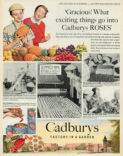 Cadbury Advertisement, 1953.