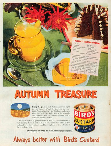Bird's Custard Powder Advertisement, 1950.