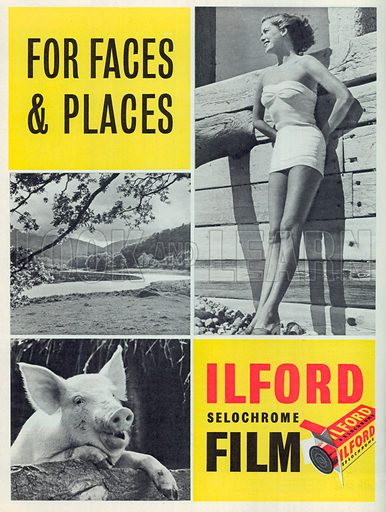 Ilford Selochrome Film Advertisement, 1950.