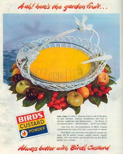 Bird's Custard Powder Advertisement, 1950.