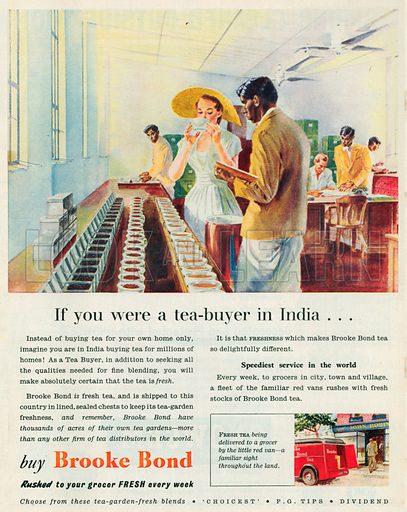 Brooke Bond Advertisement, 1953.