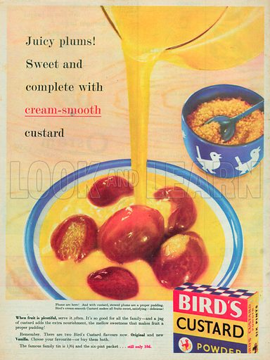 Bird's Custard Powder Advertisement, 1955.