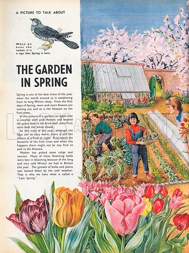 The garden in Spring shows a walled vegetable garden with rows of cabbages and sprouts waiting to be cleared by father, an apple tree in flower, and other fruit trees heavy with blossom in the orchard beyond; daffodils and tulips occupy the foreground.