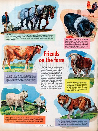 Six vignettes of farm animals.