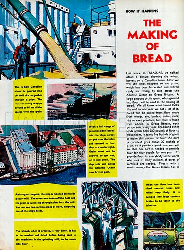The Making of Bread.