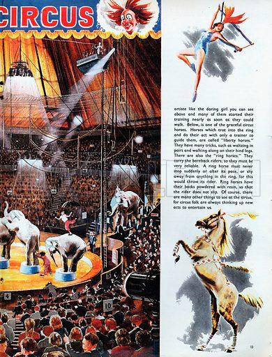 At the circus.