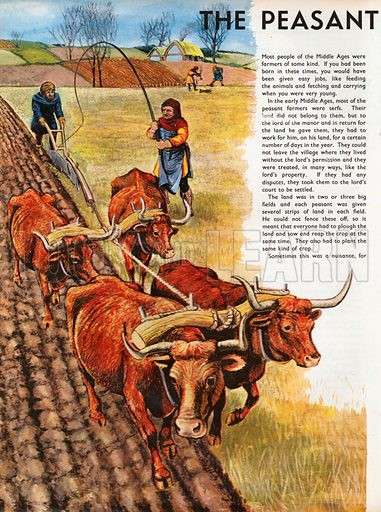The Wonderful Story of Britain: The Peasant Famers. Mediaeval peasant farmers plough a strip of field while others build a hedge.