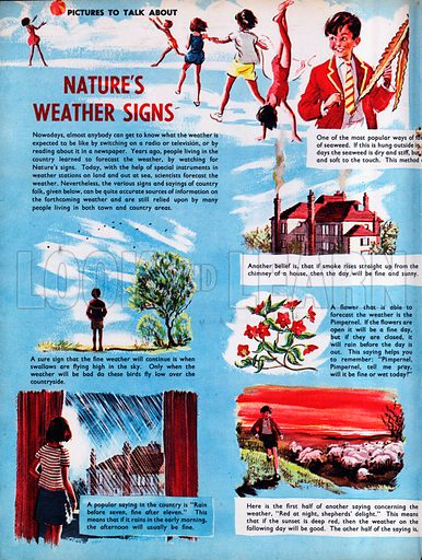 Nature's Weather Signs.