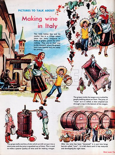 Making wine in Italy.