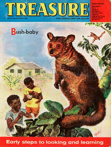 Bush-baby shows an African boy and girl feeding one of two Bush-babies.