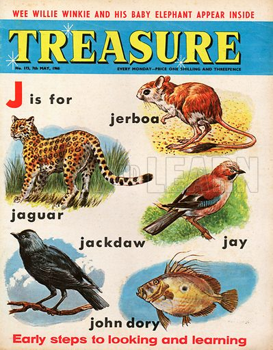 J is for jerboa, jaguar, jackdaw, jay and John dory, with pictures.