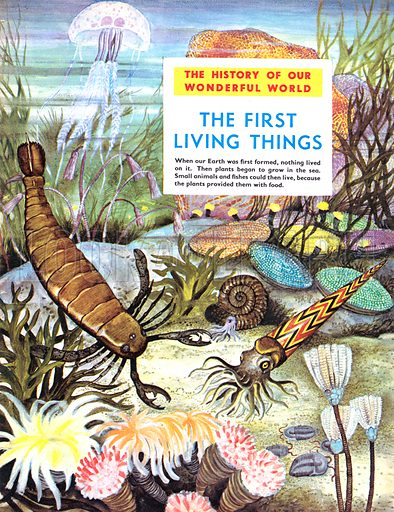 The History of Our Wonderful World: The First Living Things.