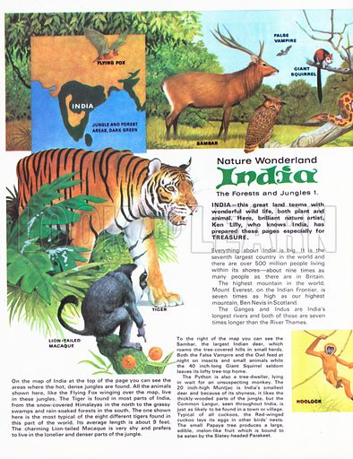 India: The Forest and Jungles 1.