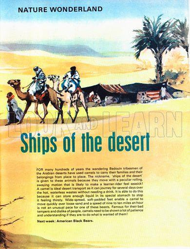 Ships of the desert.