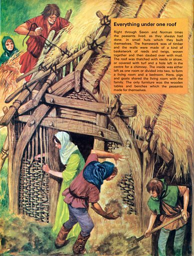 Everything under one roof. Saxon and Norman peasants lived in small huts which they built themselves with woven walls of reeds daubed with mud and thatched roofs.