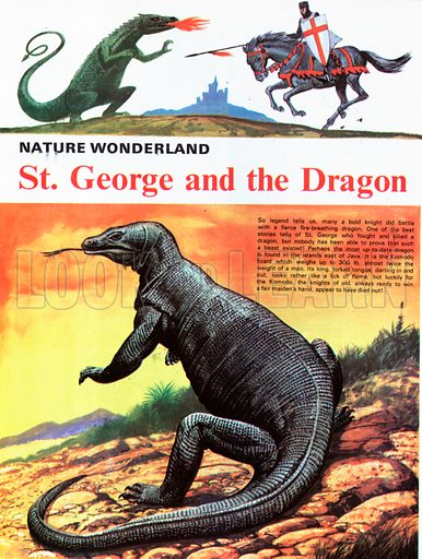 St George and the Dragon - the Komodo lizard.