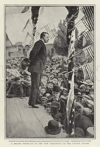 A Recent Portrait of the New President of the United States. Illustration for The Graphic, 28 September 1901.