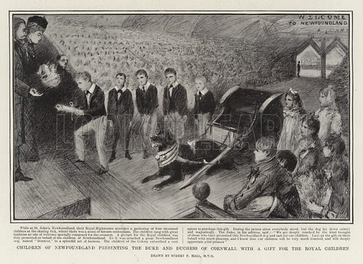 Children of Newfoundland presenting the Duke and Duchess of Cornwall with a Gift for the Royal Children. Illustration for The Graphic, 9 November 1901.
