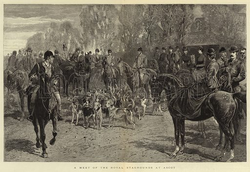 A Meet of the Royal Staghounds at Ascot. Illustration for The Graphic, 31 March 1888.