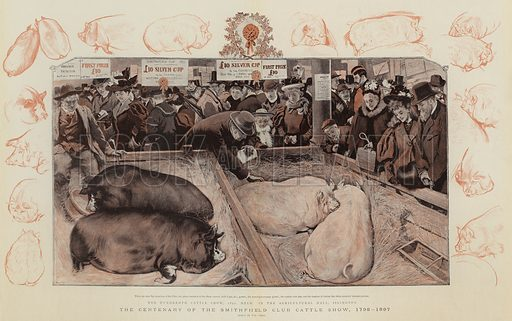 The Centenary of the Smithfield Club Cattle Show, 1798-1897. Illustration for The Graphic, 1897.