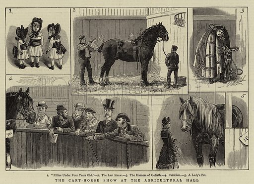 The Cart-Horse Show at the Agricultural Hall. Illustration for The Graphic, 10 March 1883.