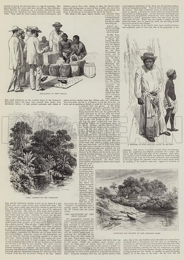 The Germans in Africa. Illustration for The Graphic, 22 November 1884.