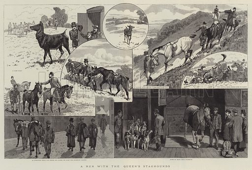 A Run with the Queen's Staghounds. Illustration for The Graphic, 25 January 1890.