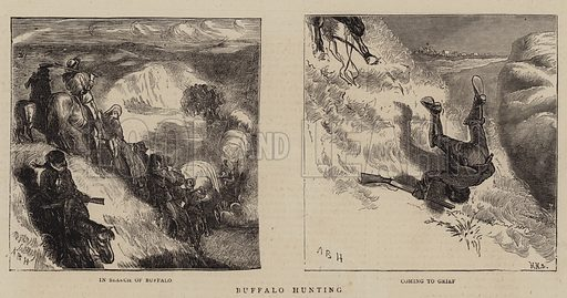 Buffalo Hunting. Illustration for The Graphic, 14 January 1871.