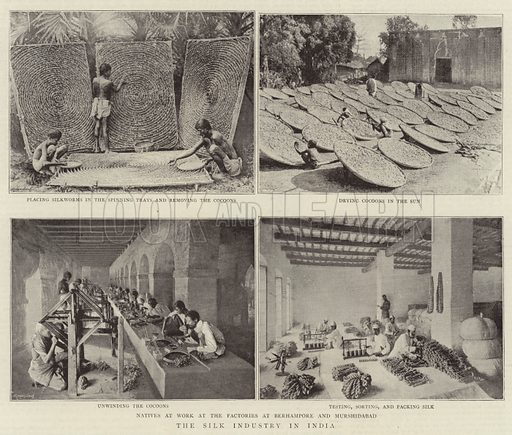 The Silk Industry in India. Illustration for The Graphic, 28 September 1895.