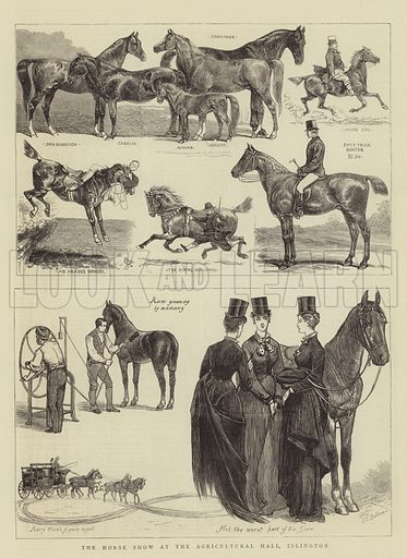 The Horse Show at the Agricultural Hall, Islington. Illustration for The Graphic, 17 June 1876.