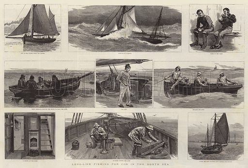 Long-Line Fishing for Cod in the North Sea. Illustration for The Graphic, 1886.