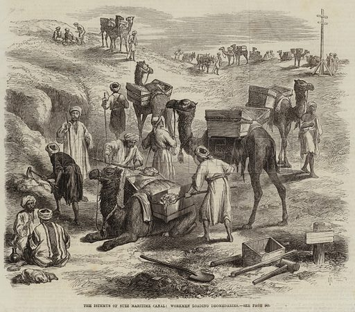 The Isthmus of Suez Maritime Canal, Workmen loading Dromedaries. Illustration for The Illustrated London News, 13 March 1869.