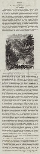 Salmon Fishing, Strand's Bridge; Vale of Rutland. Illustration for The Illustrated London News, 3 September 1842.