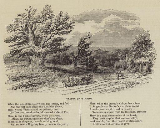 Glades of Windsor. Illustration for The Illustrated London News, 1 October 1842.