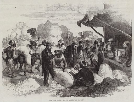 The Suez Canal, Cotton Market at Zagazig. Illustration for The Illustrated London News, 31 January 1863.