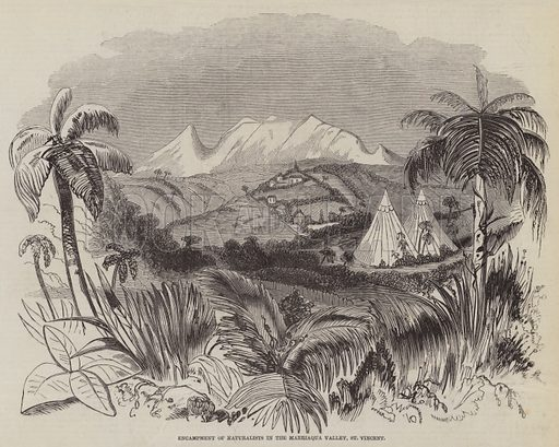 Encampment of Naturalists in the Marriaqua Valley, St Vincent. Illustration for The Pictorial Times, 10 October 1846.
