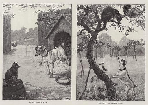 Cats and Dogs. Illustration for The Illustrated London News, 18 June 1887.