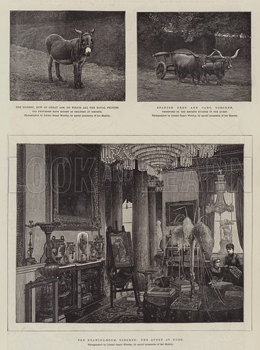 Sketches at Osborne. Illustration for The Illustrated London News, 13 June 1887.