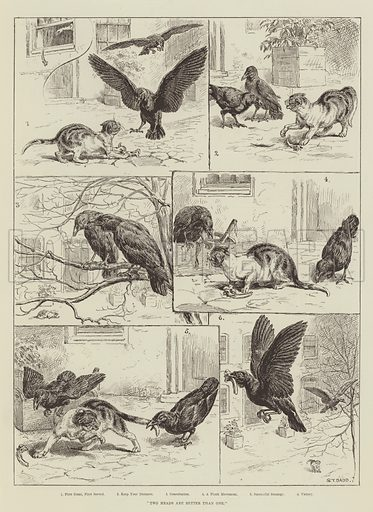 Two Heads are Better than One. Illustration for The Illustrated London News, 26 July 1890.