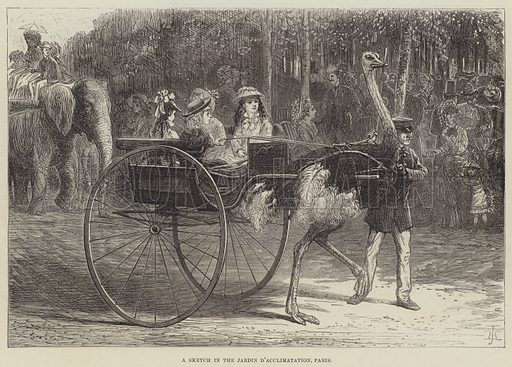 A Sketch in the Jardin d'Acclimatation, Paris. Illustration for The Illustrated London News, 16 October 1875.