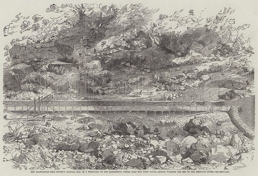 The Californian Gold District, Kanaha Bar, on a Tributary of the Sacramento, where Gold was first found, Miners working the Bed of the American River. Illustration for The Illustrated London News, 24 January 1852.