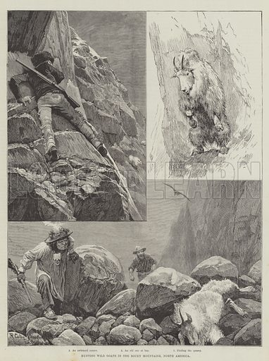 Hunting Wild Goats in the Rocky Mountains, North America. Illustration for The Illustrated London News, 27 November 1886.