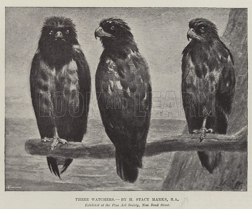 Three Watchers. Illustration for The Illustrated London News, 18 May 1895.